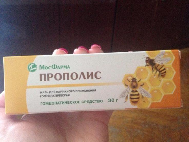 Как сделать настойку из пчелиного фото 923