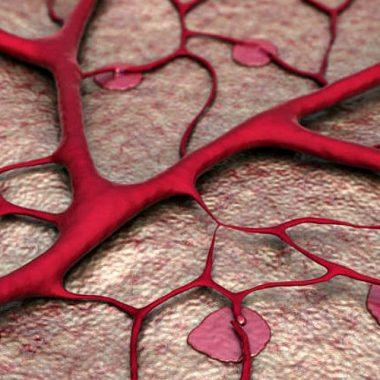 Лечебный эффект геля Индовазин