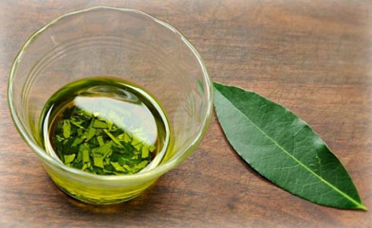 7 народных способов лечения геморроя лавровым листом