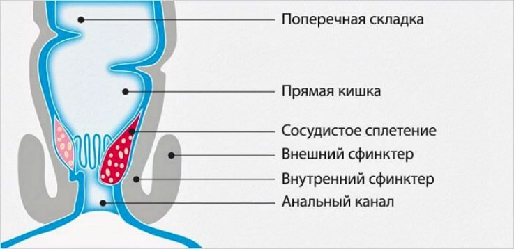 Характерные факторы при беременности