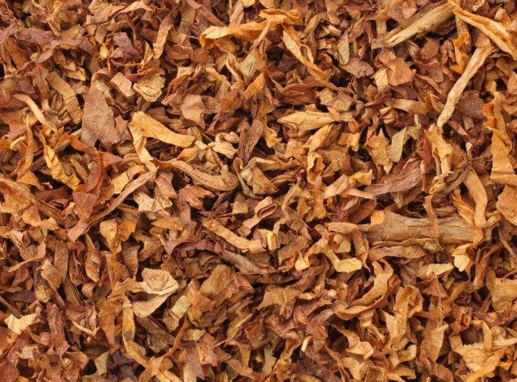 Лечение геморроя табаком